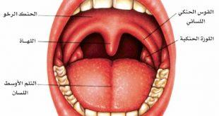 صورة علامات التهاب اللوز , اعراض وعلاج التهاب اللوز