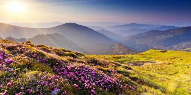 صور صور جميلة من الطبيعة , الهواء النقي يروي الروح