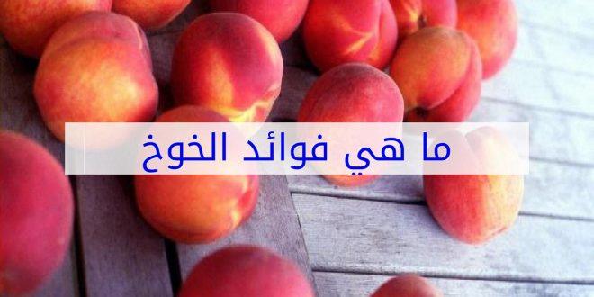 صور ما هي فوائد الخوخ , من الفواكه التي تعالج الامراض