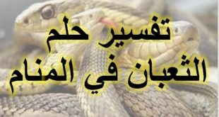 صور تفسير الحلم بالثعبان , الخوف الشديد من الثعبان