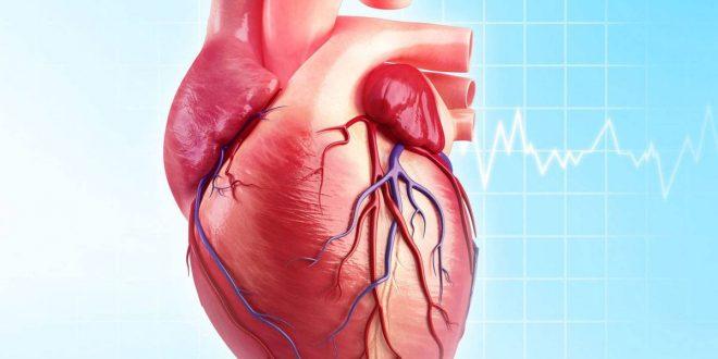 صور اعراض ضعف القلب , من غيره لا يمكننا العيش
