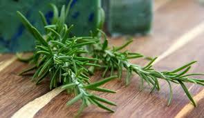 اعشاب لتخفيف الوزن , اعشاب لمشكلة الوزن الزايد