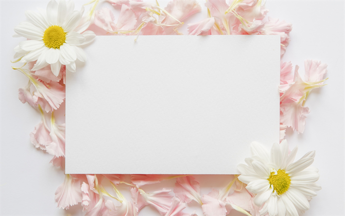 بطاقات معايدة فارغة صور بطاقات للتهنئة بالعيد ليست ممتلئة عجيب