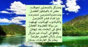صورة اصعب قصيدة عربية , تعرف علي مفهوم القصيدة
