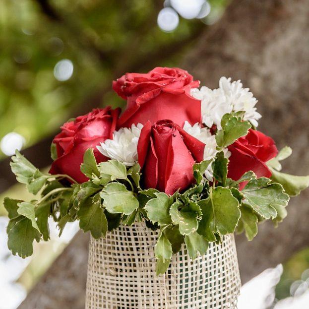 صور ورد احمر طبيعي اجمل الوروود الطبيعيه باللون الاحمر عجيب وغريب