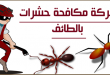 صور شركة مكافحة حشرات بالطائف , القضاء علي الحشرات