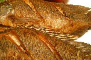 صور فوائد السمك المقلي , تعرف على فوائد السمك