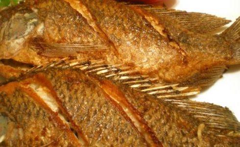 صورة فوائد السمك المقلي , تعرف على فوائد السمك