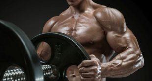 صور اضرار رياضة كمال الاجسام , مشاكل رياضة بناء العضلات