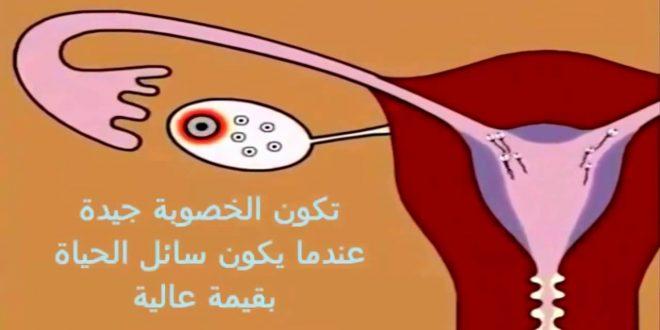 صورة هل يحدث حمل بعد الدورة بيوم , احتمال كبير يحدث هذا