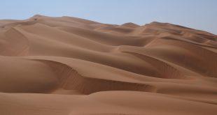 صور موضوع تعبير عن تعمير الصحراء , خير الاعمال التى تهتم بها الدولة