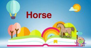 كلمة حصان بالانجليزي , اسهل لغة على الاطلاق