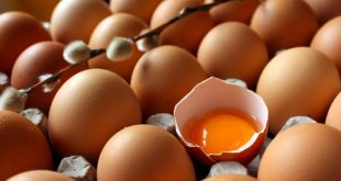 صورة فقس البيض في المنام , تكسير البيض خلاف