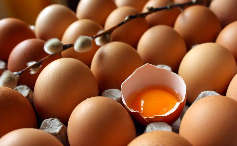 فقس البيض في المنام تكسير البيض خلاف عجيب وغريب