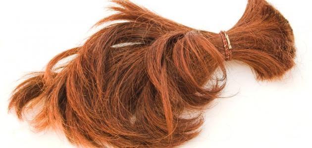 صورة سقوط الشعر في المنام , تساقط الشعر و دلالاته