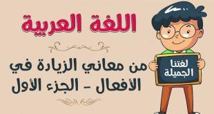 صورة معاني اللغة العربية , اولي لغات العالم 1258 9 310x165