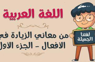 صورة معاني اللغة العربية , اولي لغات العالم