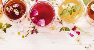 صورة الشاي للشعر الجاف , حل الشعر الجاف