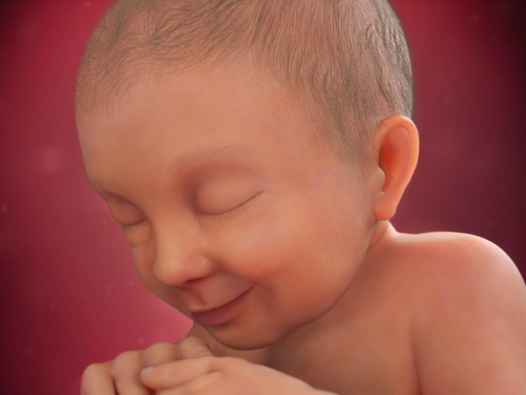 صورة الاسبوع 37 من الحمل , تطور نمو الجنين فى نهاية الحمل
