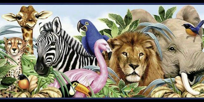 صورة موضوع تعبير عن حديقة الحيوان , تعرف على مكان يوجد به الحيوانات