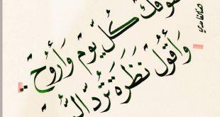 صورة اشوفك كل يوم واروح كلمات , اروع ماغني محمد عبده