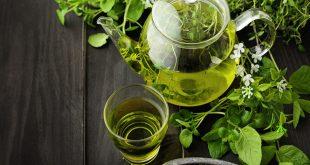 الشاي الاخضر للشعر , احصلي على شعر لامع وجذاب مع الشاي الاخضر