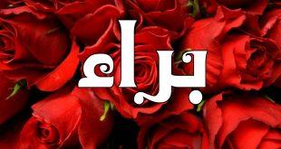 صورة معنى اسم براء , اسم علم مذكر ذو معنى جذاب