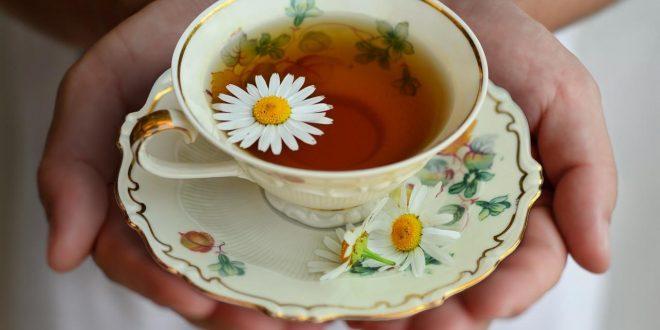 صورة فوائد شاي البابونج , سر النوم العميق