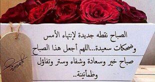 صورة ابيات شعر صباح الورد , زهور تقراها عيناك صباحا