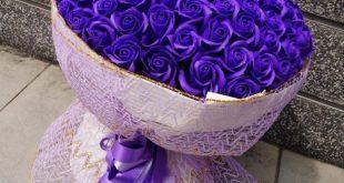 صورة باقات ورد بنفسجي , أين أنتي يا عاشقة هذا اللون